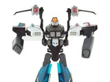 Transformers Prowl (War Within) Titanium