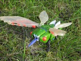 Transformers Cicadacon Beast Era