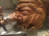 Star Wars Rancor and Luke Skywalker Power of the Force (POTF2) (1995) thumbnail 2