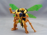 Transformers Waspinator (Fox Kids) Beast Era