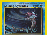 Pokemon Shining Gyarados Second Generation