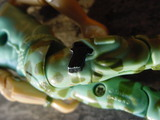 G.I. Joe Gung-Ho Classic Collection thumbnail 8
