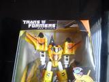 Transformers Sunstorm (War Within) Titanium
