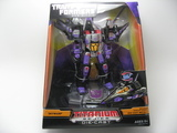 Transformers Skywarp (War Within) Titanium